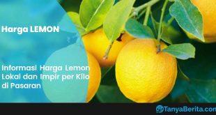 Harga Lemon Per Kg Terbaru
